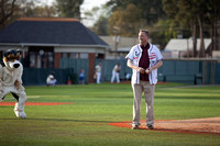 President throws first pitch